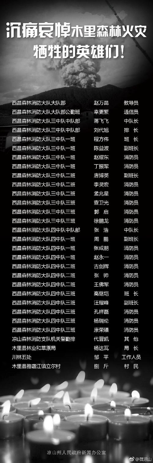 四川凉山州木里县森林火灾牺牲人员名单公布(图)