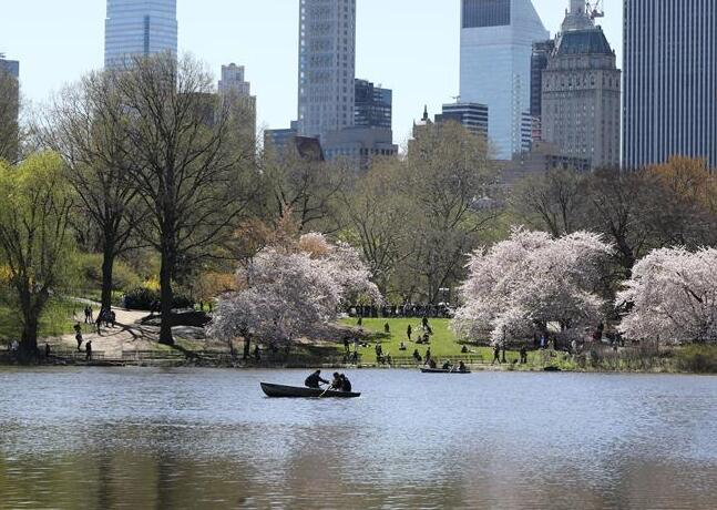 世界园林巡礼――纽约的城市花园:中央公园