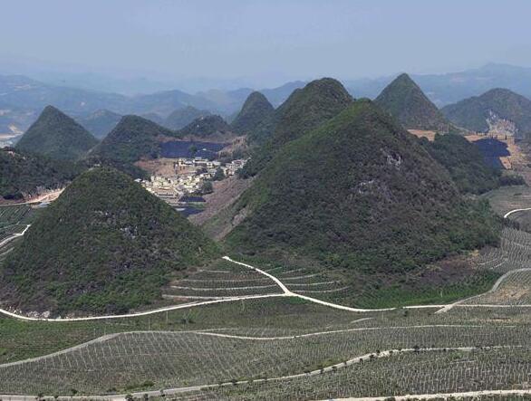 云南西畴:石漠化山地披绿装