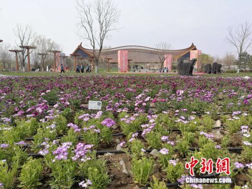 北京世园会开幕在即 各项准备工作进入最后冲刺