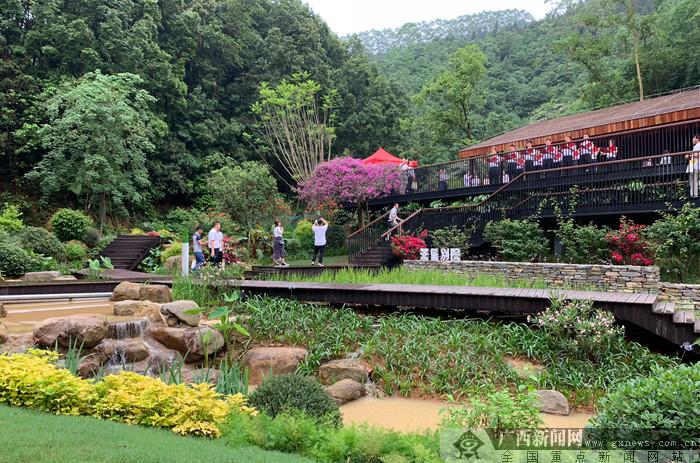 """广西高峰森林公园开园试运营 打造绿城""""森林秘境"""""""