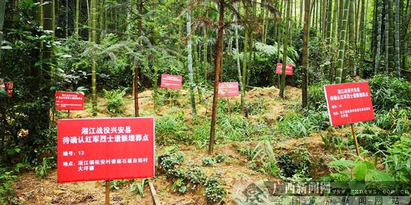 再走红军路 溶江徐昭英老奶奶为红军守墓几十年