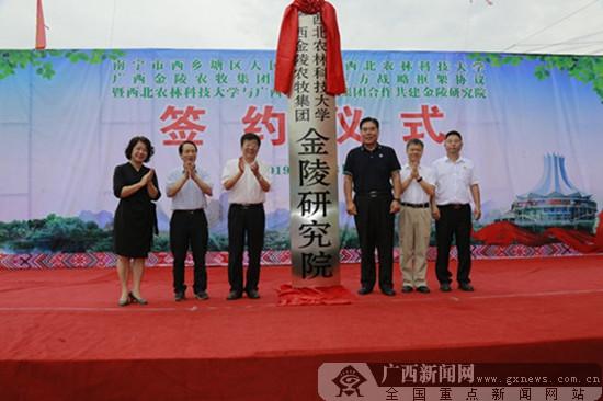 西乡塘区:政校企三方合作助力经济发展