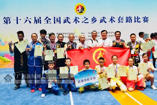 2019全国武术之乡武术套路赛:桂平获6金11银10铜