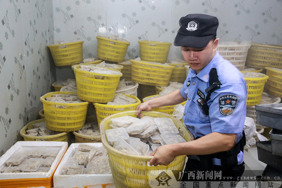 2019上半年南宁海关立案查办走私违法犯罪案件逾千起