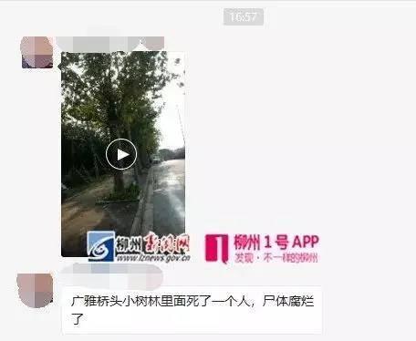 http://www.qwican.com/jiaoyuwenhua/1635289.html