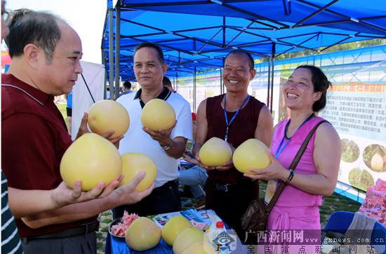 第二届广西蜜柚文化节在美丽南方举办