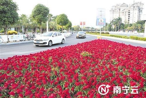 """南宁城市治理""""精细化"""" 鲜花红旗扮靓大街小巷"""