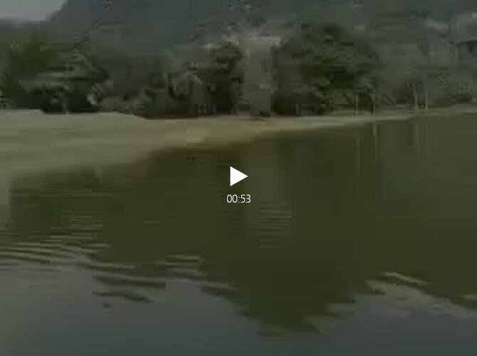 注意了!崇左某水库有鳄鱼出没……