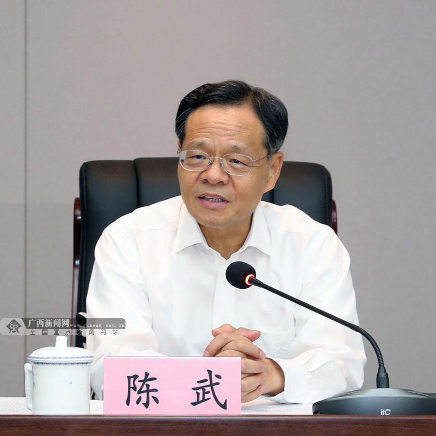 陈武:在更高层次更高水平上加快推动西部陆海新通道建设