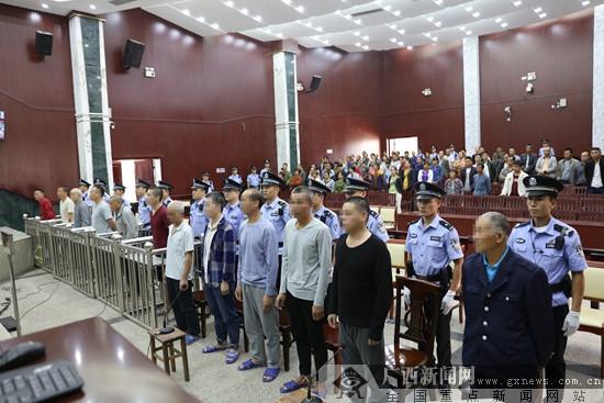 武宣12名村民阻拦他人砍运林木被判刑