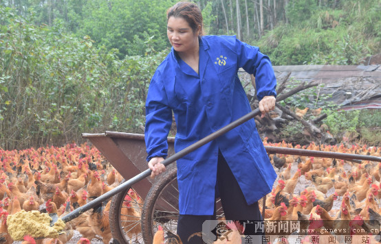 梁秀芳 上思一个立志带动贫困户共同富裕的村妇
