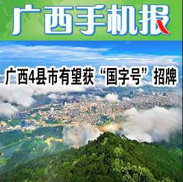 广西手机报11月4日下午版