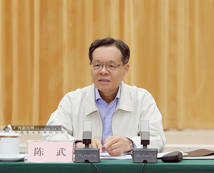 """陈武:全面掀起我区""""两路""""建设新高潮"""