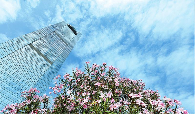 [推荐]1―10月南宁市环境空气质量排名全国第16位