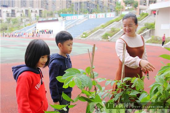 小学开展园艺课程实践活动 提升学生综合素养能力