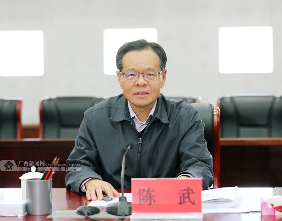 """陈武参加指导崇左市委常委班子""""不忘初心、牢记使命""""专题民主生活会"""