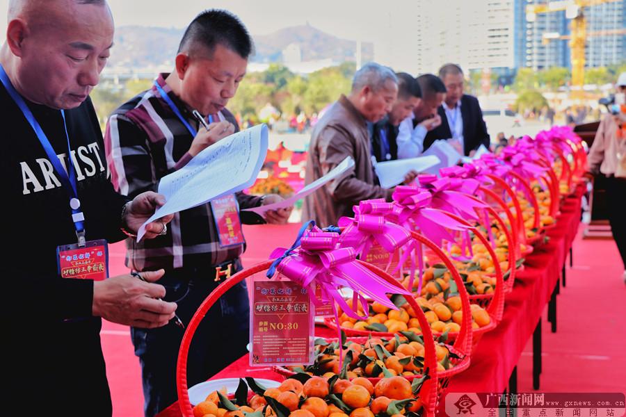 荔浦市第三届荔浦芋文化节开幕 亮点突出精彩纷呈