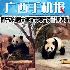 广西手机报1月15日下午版