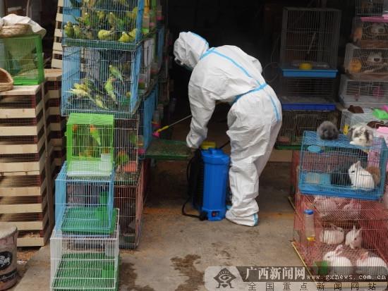 侯江宁:野生动物疫源疫病监测的排头兵