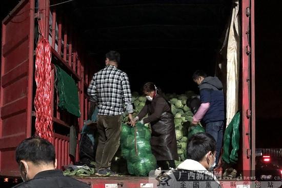 威尼斯人网站市食用菌种植专业户为武汉捐赠12吨爱心蔬菜