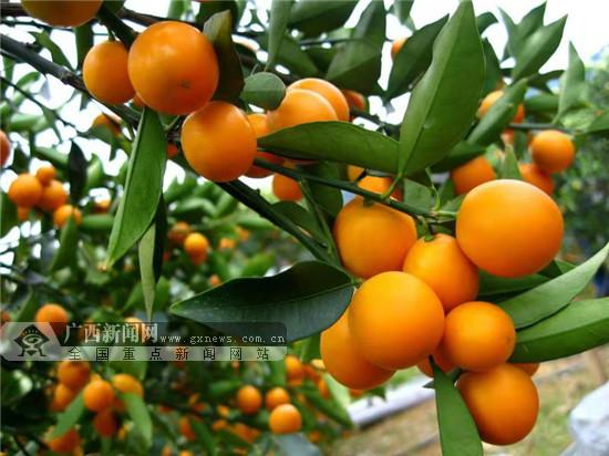 http://www.qwican.com/xiuxianlvyou/2991087.html