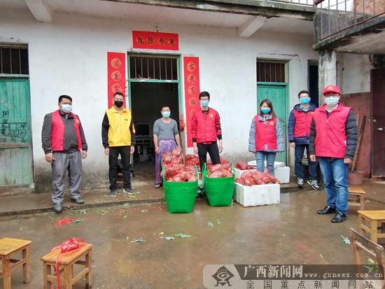 南宁市邕宁区:党员助农为乐 线上爱心带货