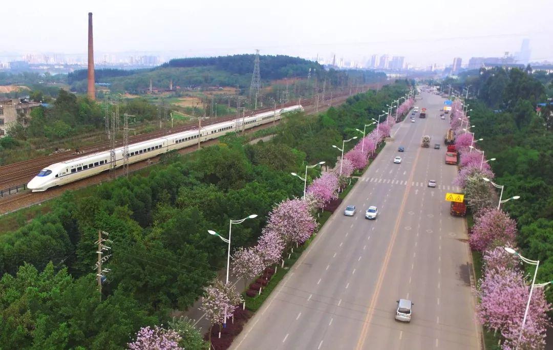 广西铁路部门调整部分旅客列车运