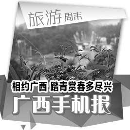 广西手机报4月4日下午版
