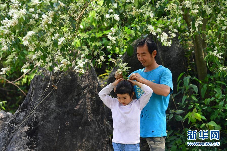 高清组图:可爱的乡村——用勤劳双手呵护温馨小家