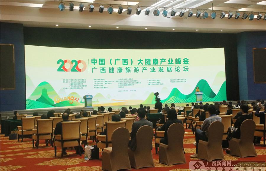 广西健康旅游产业发展论坛在南宁