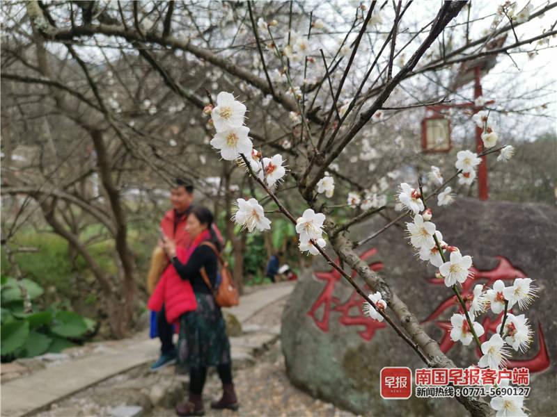 去年广西接待游客6.61亿人次 总消费7267.53亿元