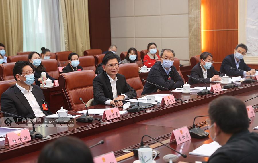 蓝天立参加柳州市代表团审议