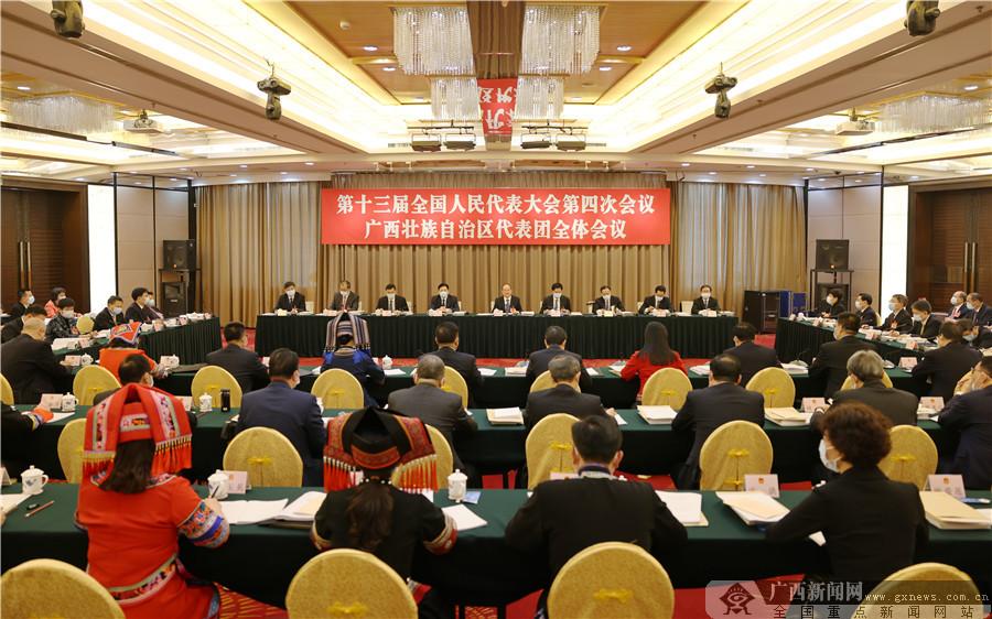 十三届全国人大四次会议广西代表团召开全体会议 推选鹿心社为代表团团长