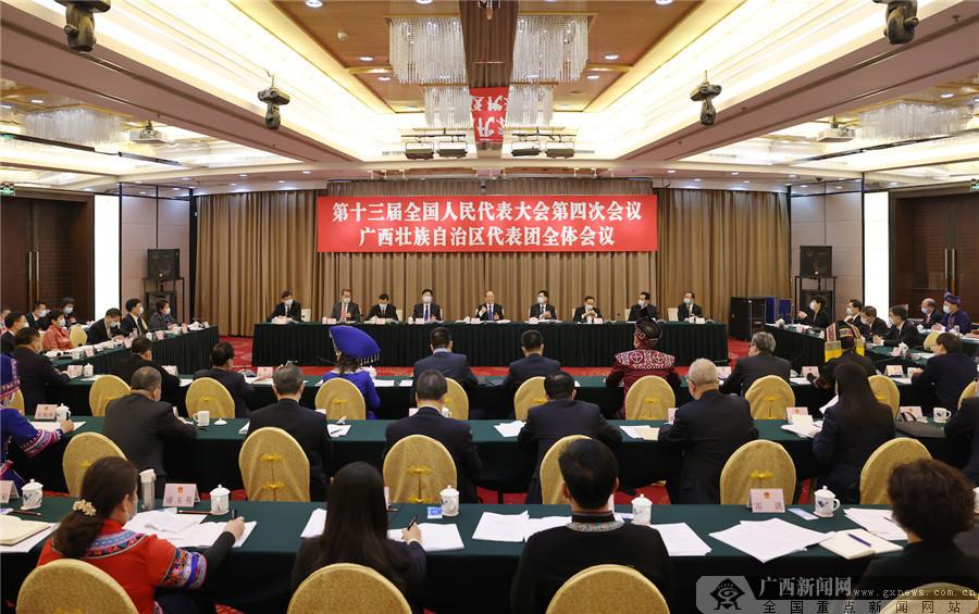 广西代表团审议政府工作报告