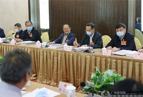 广西代表团分组审议审查有关报告