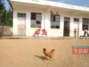 梧州藤县一小学剩1名老师2名学生 不少人旁听(图)