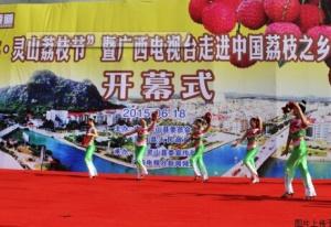2015年灵山荔枝节开幕式