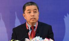 卢卫主持中国-东盟信息港论坛:打击网络犯罪讨论会