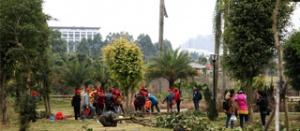 高清:千人共植公益林