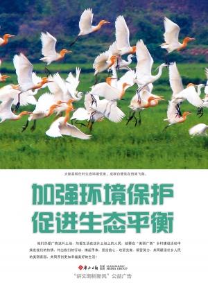 生态乡村公益广告—白鹭篇