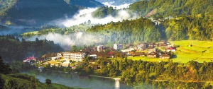 广西植被生态质量居全国首位 森林覆盖率达62.2%