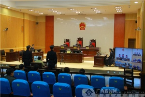 平南县原县委书记黄元明一审被判十年