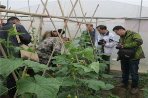 西乡塘区科技局到贫困村开展科技下乡、服务指导活动