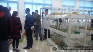 威海海洋职业学院:神奇微藻孕育海洋动物