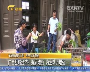 广西县域经济:提质增效 内生动力增强