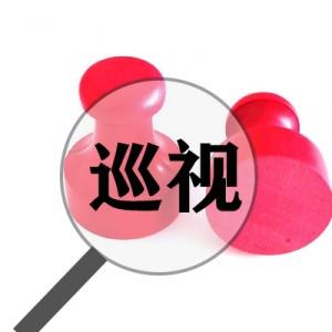 中共广西壮族自治区委员会关于脱贫攻坚专项巡视整改进展情况的通报