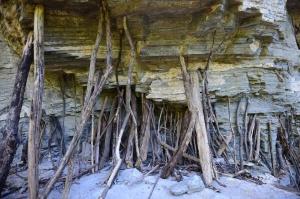 小树枝撑起大岩石?蟒河支腰崖引全国网媒探奇