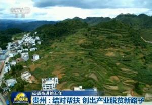贵州:结对帮扶 创出产业脱贫新路子