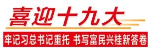 【喜迎十九大】广西:从严治党 以担当诠释忠诚